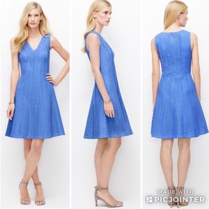 Ann Taylor Seamed Eyelet Fit and Flare Dress Blue